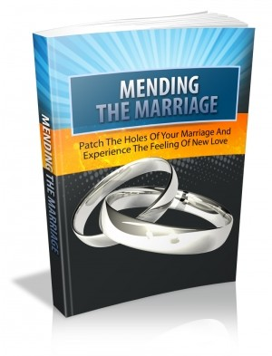 MendingTheMarriage-Book
