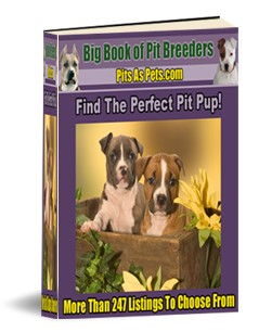 See Firsthand Why Pit Bulls Are NOT Vicious! By Purchasing Your Very Own Pit Bull Puppy! Find the perfect, well behaved, loveable puppy from a list of more than 247+ Online Kennels and Breeders!