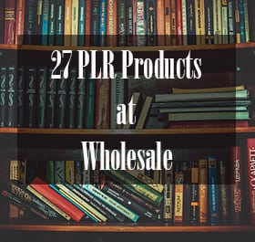 27 Wholesale PLR products