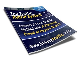 How Amazing is The Traffic Hybrid System? 1