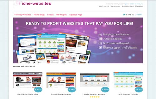 Niche-websites.info 1